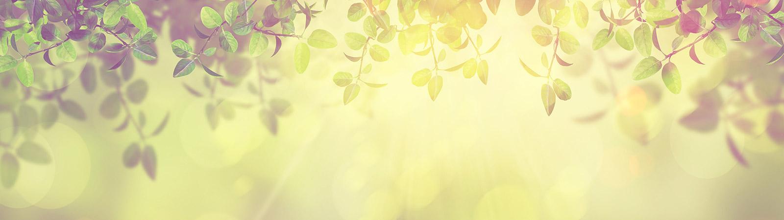 header_ecology
